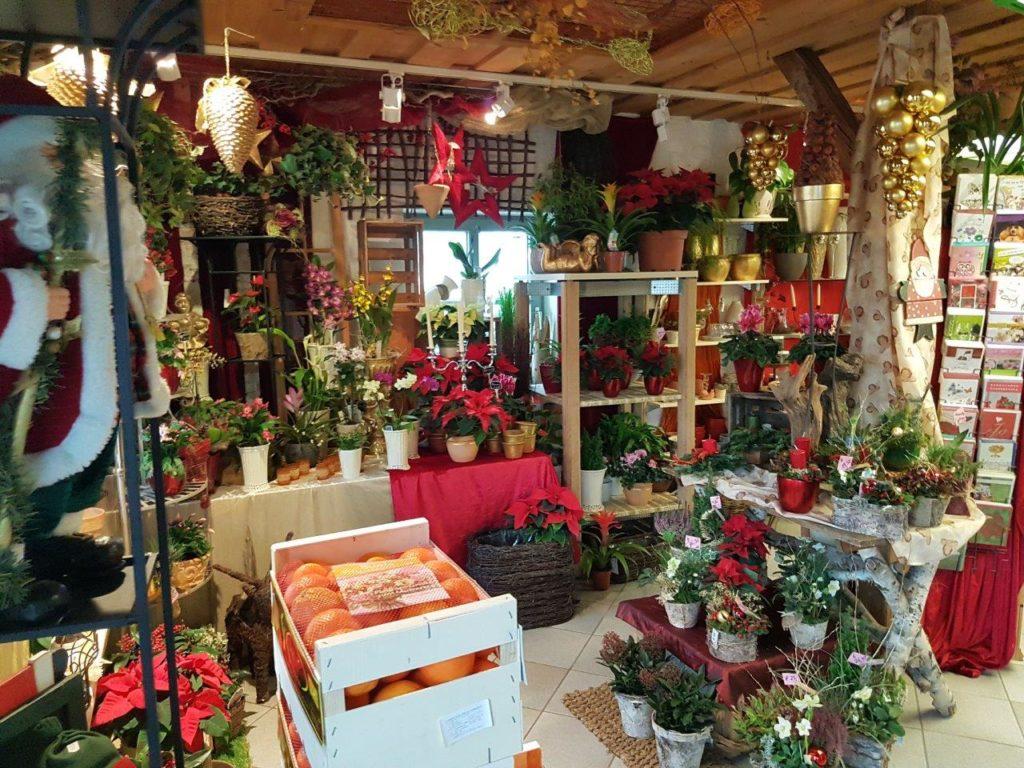 Eingangsbereich zum Laden beim Blumengeschäft in Isen Mittbach. Marold Elisabeth