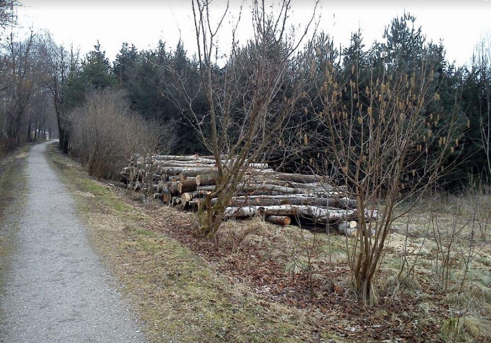 rentnerweg-isen-schinderbach