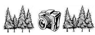 """Foto-Wettbewerb """"Sehenswertes im Wald"""" des OVV Isen"""