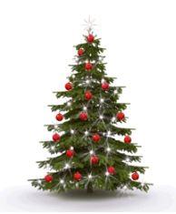 Weihnachtsbaum im internet bestellen