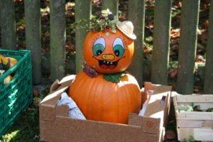 OVV Isen: Gartlermarkt am 1. Oktober