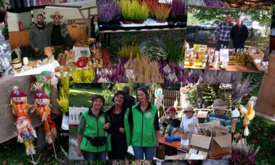 Bilder-Update! OVV-Gartlermarkt gut besucht